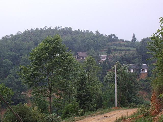 标题: 贵州省毕节地区大方县猫场镇箐口村小学(都市行囊捐,竣工)